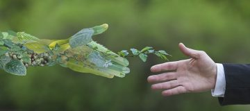 Regulation and investors' demands push fund managers towards ESG