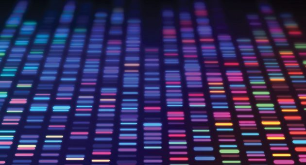 The human genome project - From then to now