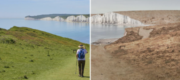 Without bees Seven Sisters in East Sussex would lose the stunning green landscape