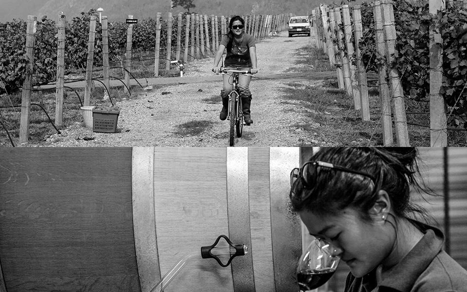GranMonte's Nikki Lohitnavy, the first and so far only female Thai winemaker