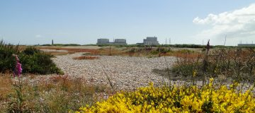 EDF Energy today said that it would begin the defuelling phase of Dungeness B nuclear power station in Kent, seven years ahead of schedule.