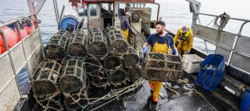 The UK has today agreed its catch limits for the fishing industry with the EU, in a deal which the government said was worth £333m.
