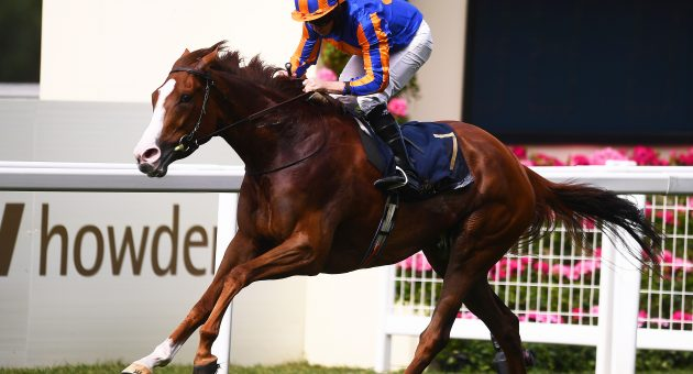 No stopping Love in King George cracker