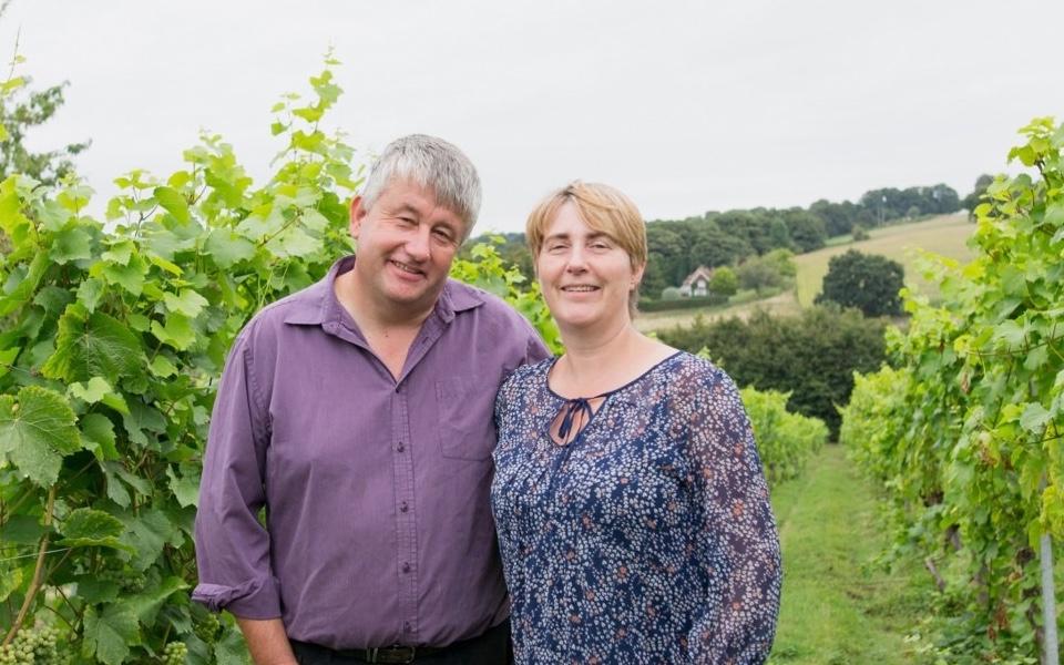 Paul and Lynn Langham who run the a'Beckett's vineyard in Wiltshire