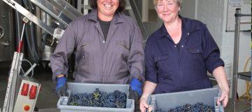 Rosé wine experts Kristina Studzinski and Ann-Marie Tynan